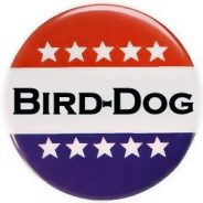Bird-dogging 101: how to hold your legislators accountable